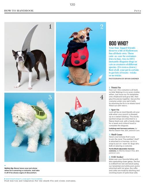 Pets_L1015PETAFR [Print].indd