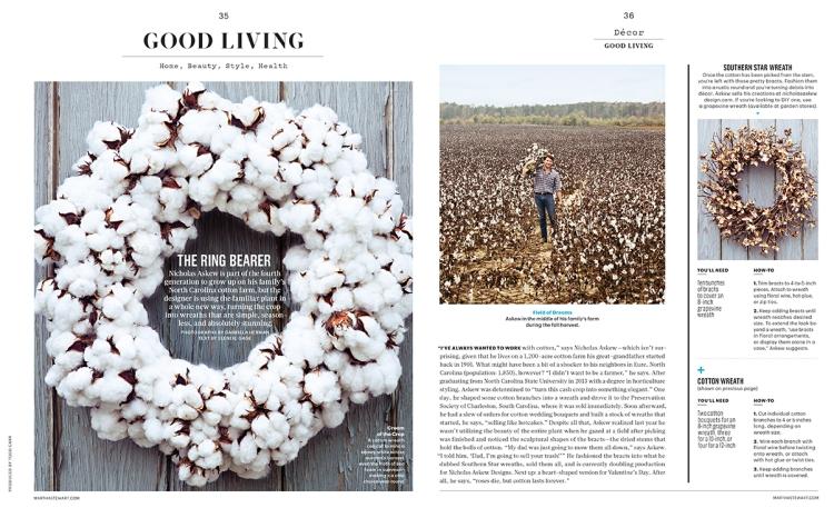 andie-diemer-martha-stewart-cotton.jpg