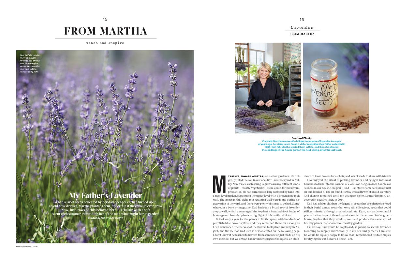andie-diemer-martha-stewart-lavender.jpg