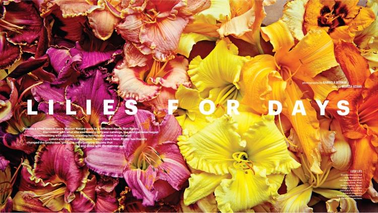 lilies-for-days-martha-stewart-andie-diemer-1.jpg